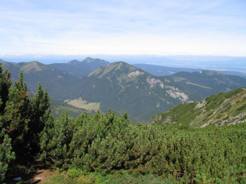 Polana Chochołowska, Bobrowiec, Grześ i Osobita #Góry #Tatry #StarorobociańskiWierch