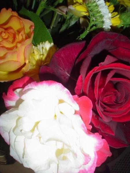 #roze #kolor