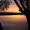 Narew wschód słońca #narew #wschód #natura