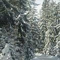 #śnieg #deska