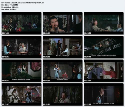 Klan wojowniczek / Xiu hua da dao /Clan of Amazons (1978) DVDRip. XviD. NAPISY ENG