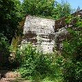 Zdjęcia z wyprawy do Wilczego Szańca #las #drzewa #bunkry #obeliska