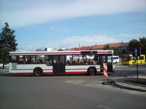 """Man """"38"""" Na linii 2 w pierwszym dniu eksploatacji.. w tle Dab """"36"""" i Mercedes obsługujący linie Tomaszów - Niewiadów #MZK #MAN"""