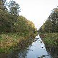 Kanał Łasica #Puszcza #jesień