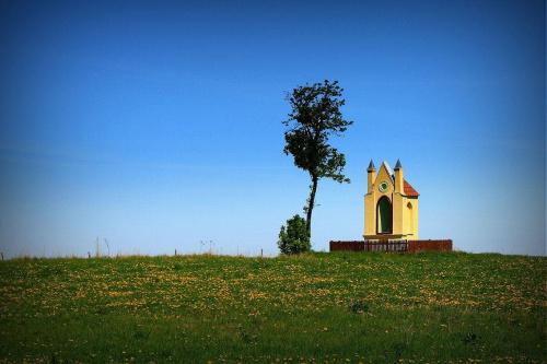 Kapliczka #KrajobrazKapliczkaŁąkaWiosna