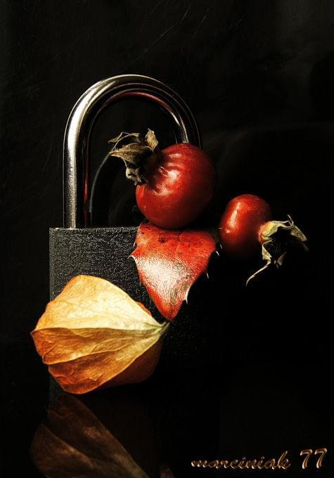 ... pokonując wszelkie zapory niepostrzeżenie nadchodzi... ze swym pięknem i przemijaniem... JESIEŃ... #jesień