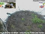 http://images38.fotosik.pl/212/383a8e3c41fa336dm.jpg