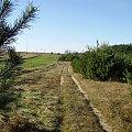 JESIEŃ W PEŁNI #jesień #jesien #kolory #ciepło #natura #macro #działka #pole #drzewa #las #liscie