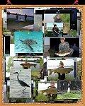 images38.fotosik.pl/228/5882cbf457d2a15fm.jpg