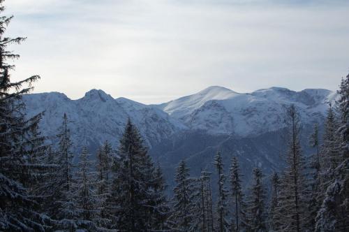 widok na Tatry z pasma Gubałówki