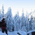 Gołoborze pod śniegiem #Góry #Łysica #GóryŚwiętokrzyskie