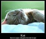 http://images38.fotosik.pl/305/42c2d436218f9c0em.jpg