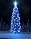 http://images38.fotosik.pl/46/c9d0cbc1713d78afm.jpg