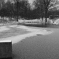 #Staw #przyroda #zima #las #natura #ruiny #StareBudynki #poligon