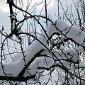 #zima #natura #snieg