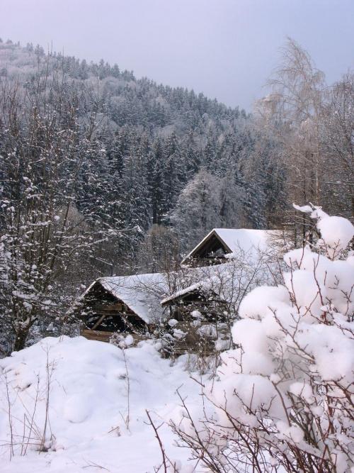 Luty 2011 roku w Ogrodzie Górskiego Wiatru