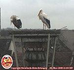 http://images38.fotosik.pl/73/f34d099d091f1189m.jpg