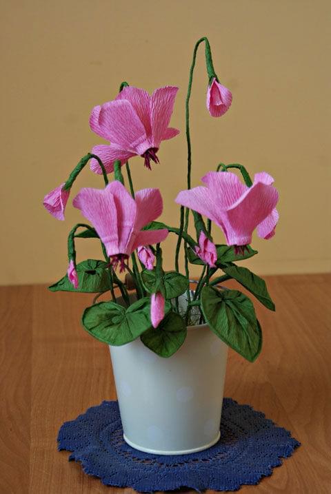 Cyklameny #bibuła #dekoracje #hobby #KompozycjeKwiatowe #krepina #KwiatyZBibuły #MojePrace #pomysły #RobótkiRęczne