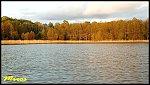 images38.fotosik.pl/856/5e0358381f17cfacm.jpg