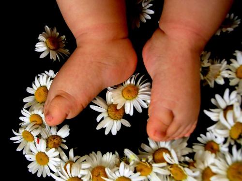 #dziecko #stópki #kwiaty