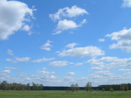 Wieś Podłęże. Woj. Łódzkie, powiat łęczycki #niebo #chmury #łódzkie #pole #lato #wakacje